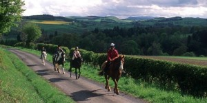 borders horse riding
