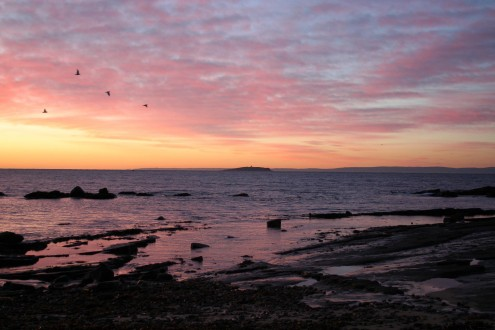 Sunset over Roome Bay, credit Susan McNaughton