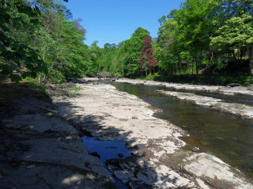 River Ericht, Blairgowrie, credit Fiona Margarita of Invermay Holiday Lets