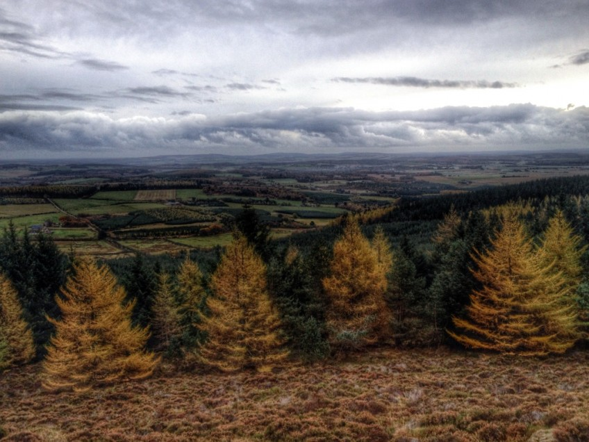 Bennachie in November