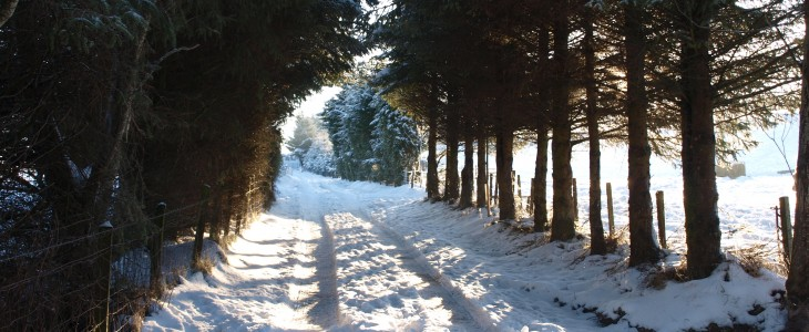 Winter Holidays In Scotland Self Catering Embrace Scotland