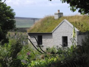 Grass roofed croft